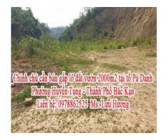 Chính chủ cần bán gấp lô đất vườn tại tổ Pá Danh - Phường Huyền Tụng - Thành Phố Bắc Kạn.