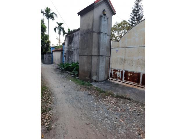 Chính chủ cần bán bán lô đất ở thôn sú 1, xã Lâm Động, huyện Thủy Nguyên, thành  phố Hải Phòng