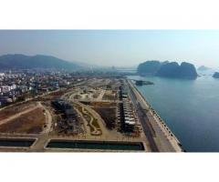 Green Dragon city Cẩm Phả - Đất nền ven biển sổ đỏ