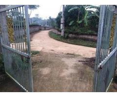 CHÍNH CHỦ cần bán gấp đất tại Khu 1, Xã Tề Lễ, Tam Nông, Phú Thọ.