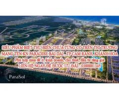 SIÊU PHẨM BIỆT THỰ BIỂN CHƯA TỪNG CÓ TRÊN THỊ TRƯỜNG MANG TÊN KN PARADISE