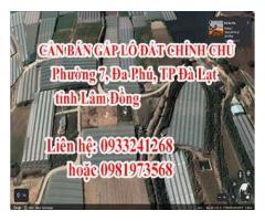 CẦN BÁN GẤP LÔ ĐẤT CHÍNH CHỦ phường 7, Đa Phú, TP Đà Lạt, tỉnh Lâm Đồng