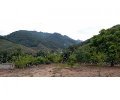 Bat_Dong_San 3000m2 Mộc_Châu gần rừng mơ Thái Hưng và thác Dải Yếm