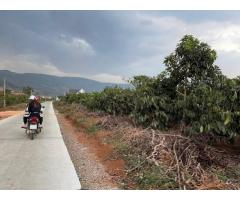 Cần bán lô đất tại Đông Thanh vùng ven Đà Lạt view cực khủng